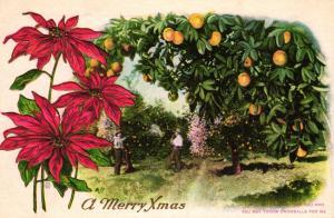 Merry Xmas ..-alte Karte ....  ( ke5869  ) siehe scan