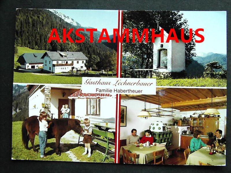 GUSSWERK Bruck Mürzzuschlag Steiermark - Gasthaus LECHNERBAUER + innen - Kinder m. Pony Pferd