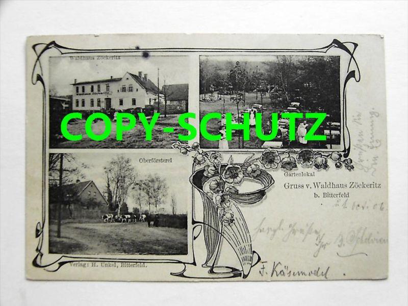 3580 ZÖCKERITZ Bitterfeld - Gasthof WALDHAUS Personen Garten Oberförsterei Kühe
