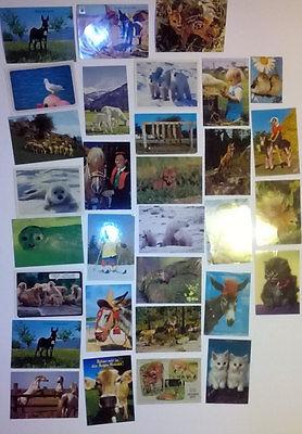 30 Ansichtskarten Tiere Sammlung Posten