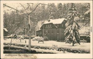 Ansichtskarte Waldbärenburg-Altenberg (Erzgebirge) Schäfermühle 1954