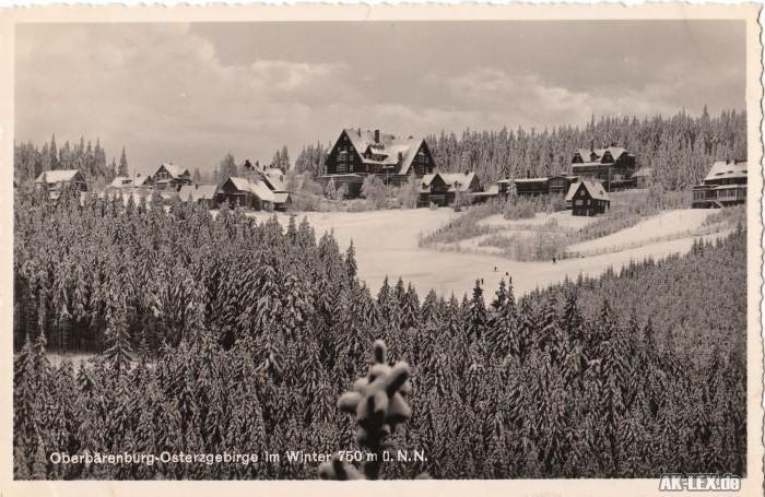 Oberbärenburg :: Altenberg (Erzgebirge)  Panorama im Winter - Foto AK ca 1935