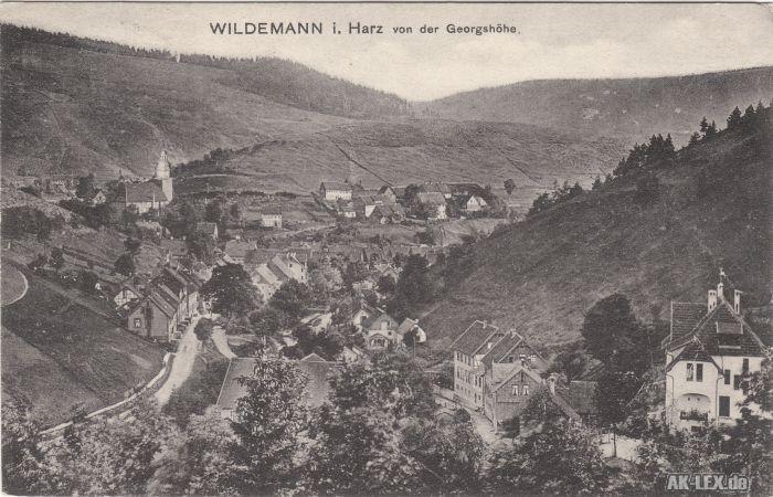 Wildemann (Innerstetal) Panorama von der Georgshöhe