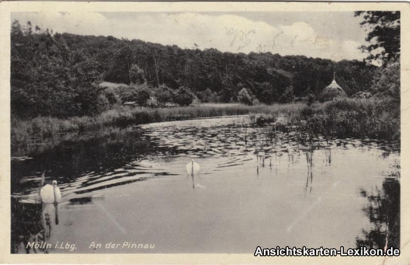 Mölln (Schleswig-Holstein) An der Pinnau
