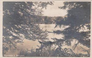 Ansichtskarte Neuruppin Binenwald bei Neuruppin