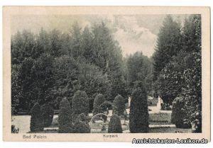 Ansichtskarte Bad Polzin Kurpark Poczyn Zdrój b widwin S