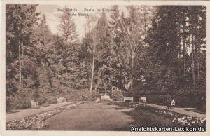 Ansichtskarte Bad Polzin Partie im Kurpark Połczyn