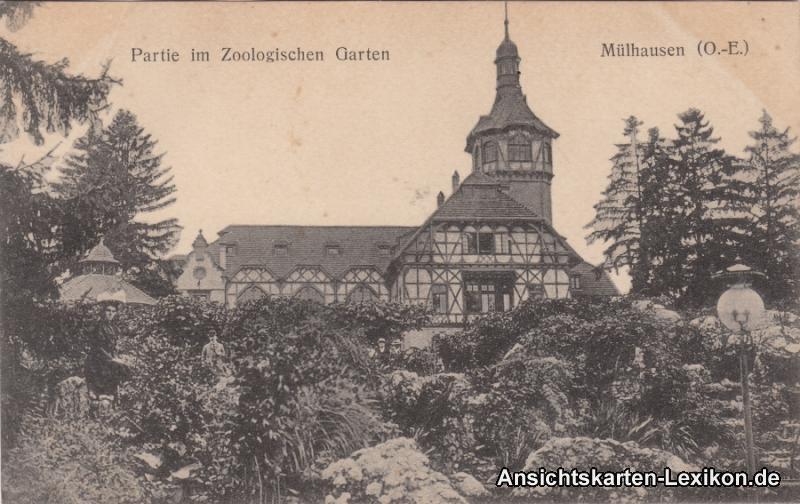 GPC Ansichtskarte Mülhausen Elsaß Partie am Zoologischen