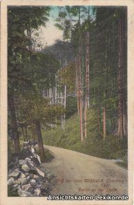 Eisenberg (Thüringen) Gruß aus dem Mühltal  - Partie an