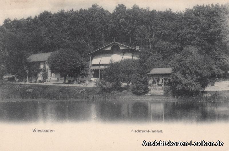 Wiesbaden Fischzucht-Anstalt