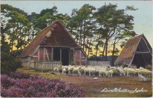 Alter Schafstall in der Lüneburger Heide Ansichtskarte 1933