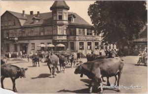 Tabarz Thüringer Wald Spindlerplatz mit Kuhherde Foto Ansichtskarte 1958