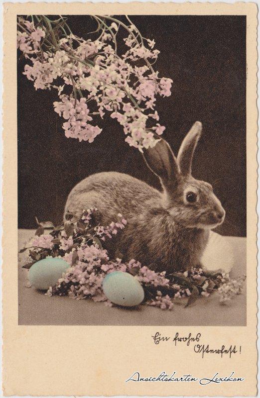 Ein frohes Osterfest: Hase und Eier