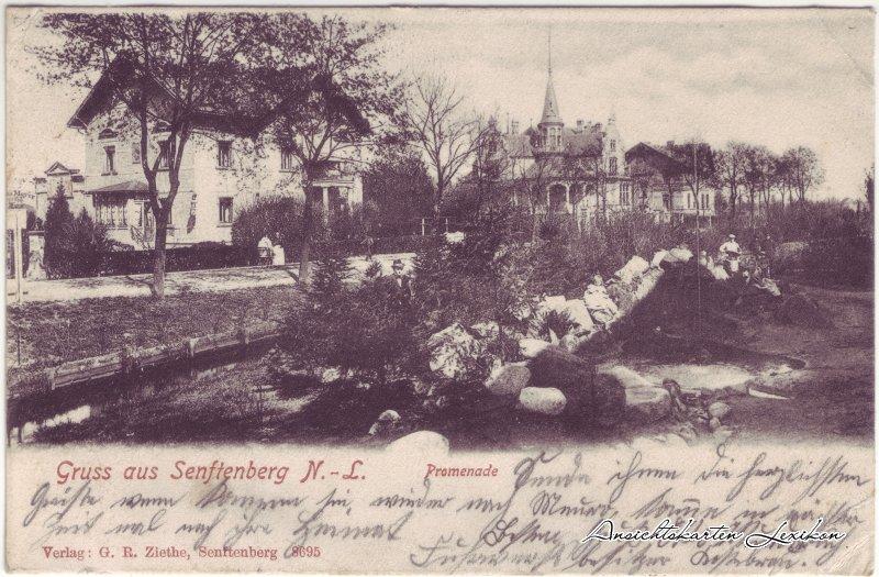 Senftenberg (Niederlausitz) Gruss aus ... Promenade