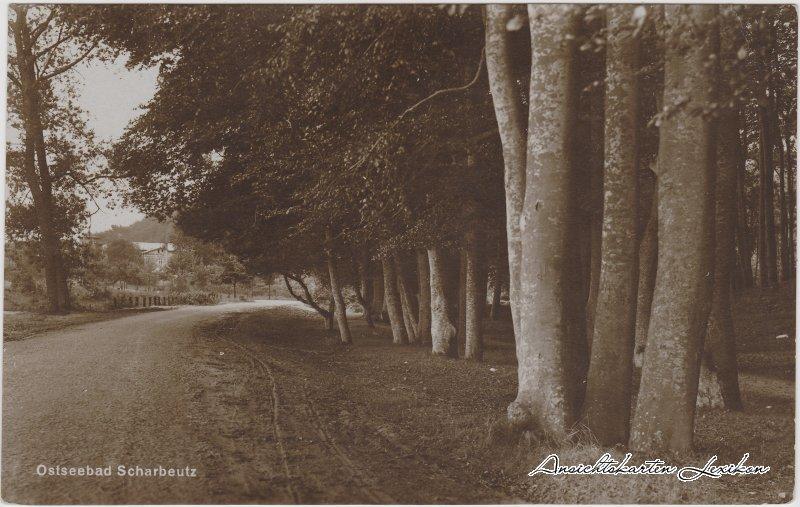 Scharbeutz Weg am Wald