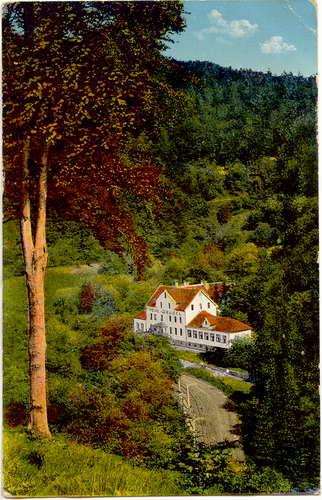 Bad Wilhelmshöhe-Kassel Pension u. Gasthaus Neue Drusel von Fritz Kollmann