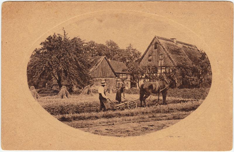Sneeuwwit-Zeeppoeder Werbekarte Landwirtschaft Nederland Niederlande 1928