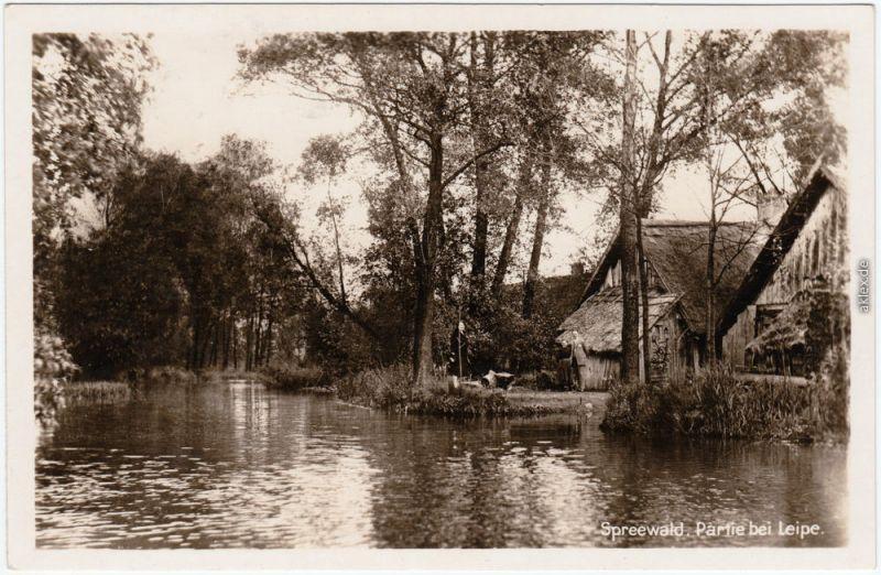 Ansichtskarte Leipe Lübbenau (Spreewald) Lipje Lubnjow Spreewald, Häuser 1930