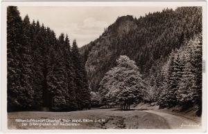Oberhof (Thüringen) Der Silbergraben mit Räuberstein (Thüringer Wald) 1938