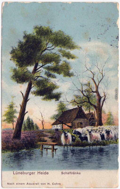 Niedersachsen b Lüneburg Lüneburger Heide - Schaftränke 1915