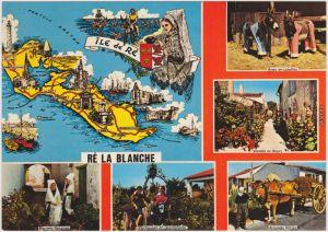 Ansichtskarte La Couarde-sur-Mer Île de Ré / Ré La Blanche 1980