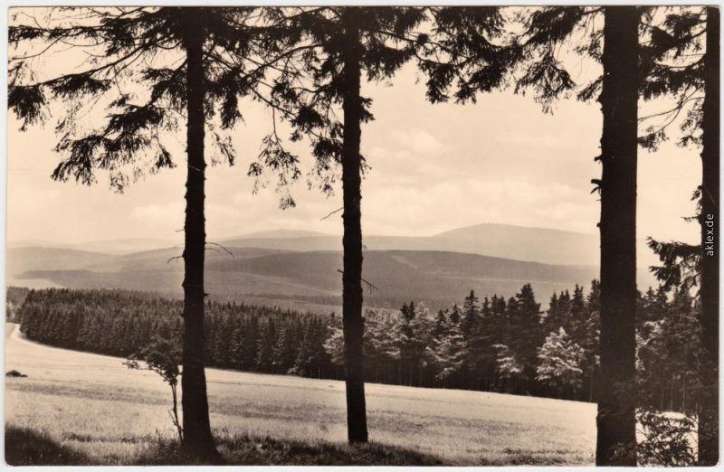 Bärenstein Altenberg (Erzgebirge) Panorama, Blick vom Bärenstein    1959