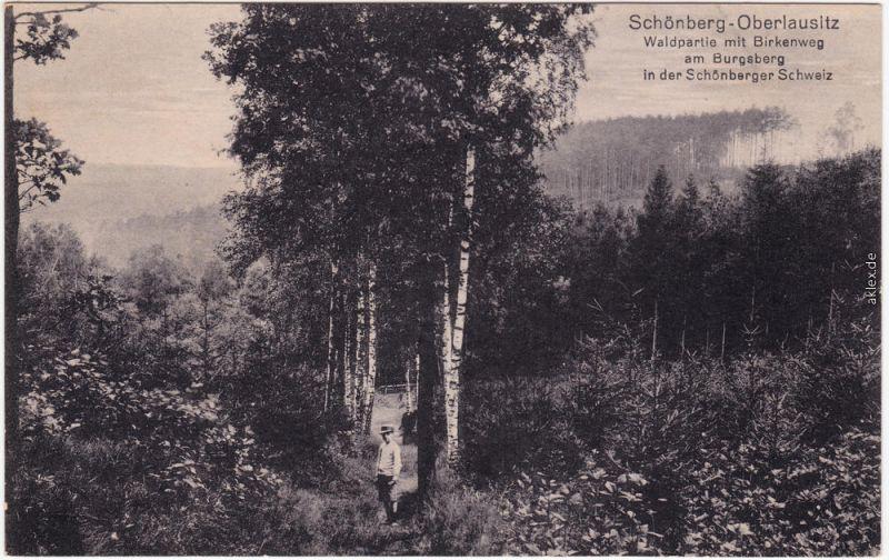 Schönberg (Oberlausitz) Sulików  Birkenweg - Jäger Zgorzelec Görlitz  1914