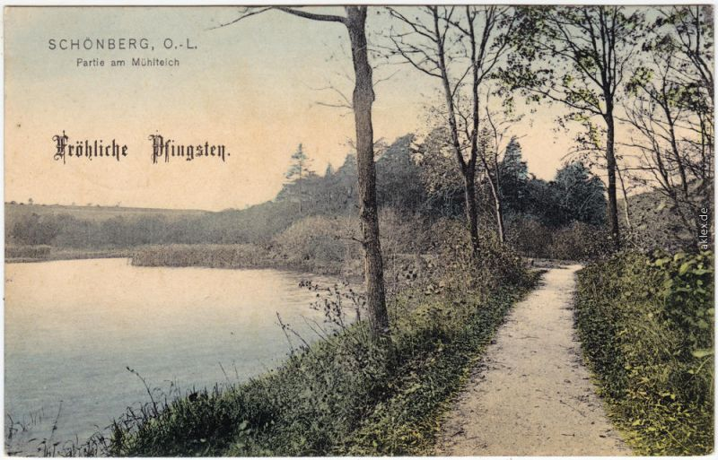 Schönberg (Oberlausitz) Sulików Partie am Mühlteich b  Zgorzelec Görlitz 1908