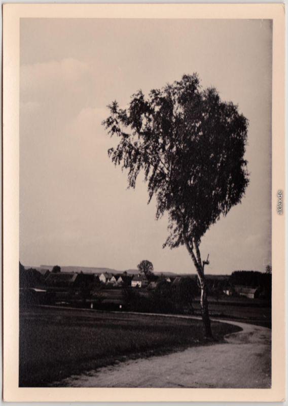 Nördlingen Birkenweg im Frankenland Nördlingen und Dinkelsbühl 1954 Privatfoto