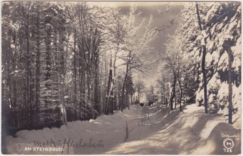 Moldau Moldava Winterlicher Waldweg Fotokarte b Aussig Teplitz 1931