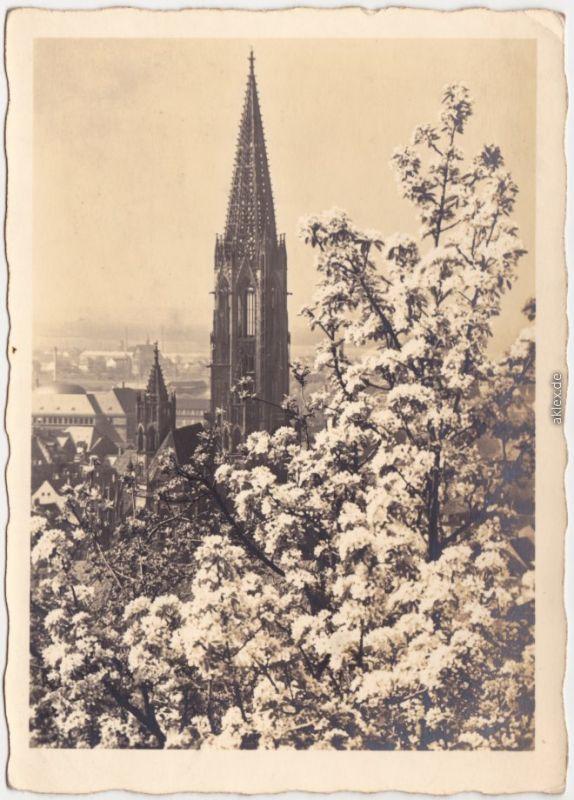 Freiburg im Breisgau Münster - Kathedralkirche (jungfrau und Gottesmutter 1941