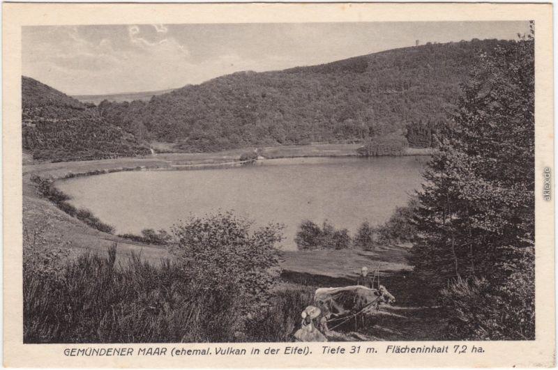 Gemünden Daun Gemündener Maar   Eifel). - Tiefe 31m - Flächeninhalt 7,2 ha 1922