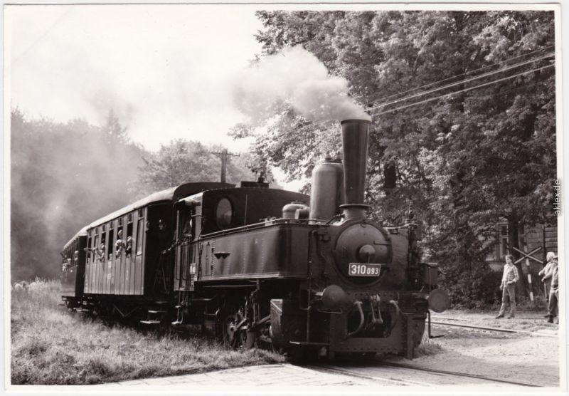 Dompflokomotive mit Personen-Waggons - Typ 310 093 Ansichtskarte 1990