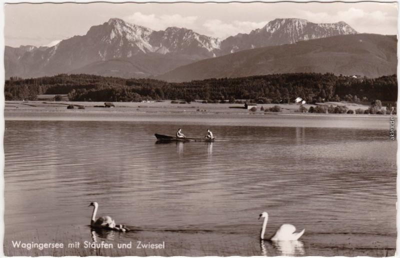 Foto Ansichtskarte Waging am See Wagingersee mit  Staufen und Zwiesel 1967
