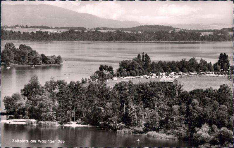 Ansichtskarte Waging am See Blick auf den Zeltplatz am Wagingersee 1959