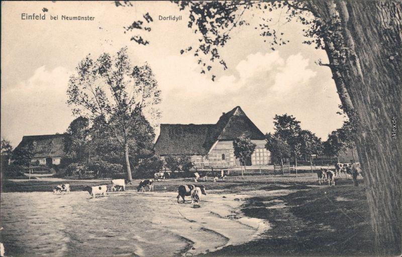 Ansichtskarte Einfeld Neumünster Dorfidyll 1916