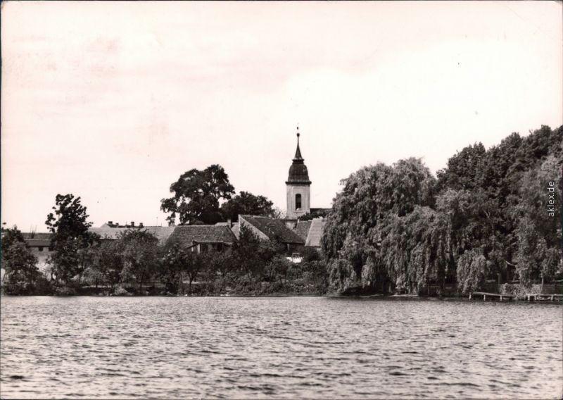 Motzen Mittenwalde (Mark) Blick vom Motzener See aus auf die Kirche 1970