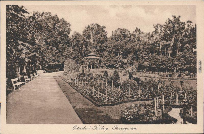 Ansichtskarte Kolberg Kołobrzeg Partie im Rosengarten 1926