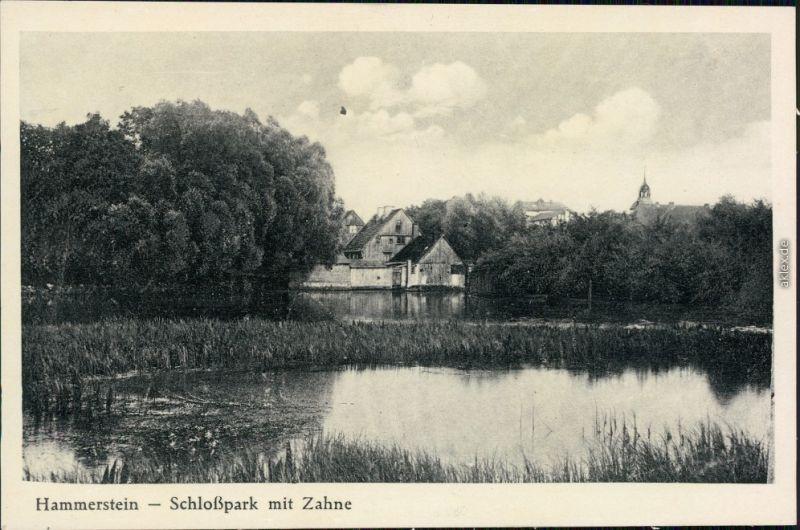Hammerstein Czarne Schloßpark mit Zahne  Grenzmark Ansichtskarte 1924
