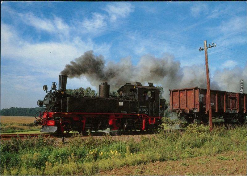 Naundorf (Sachsen) Dampflokomotive: Güterzug bei Naundorf 1998