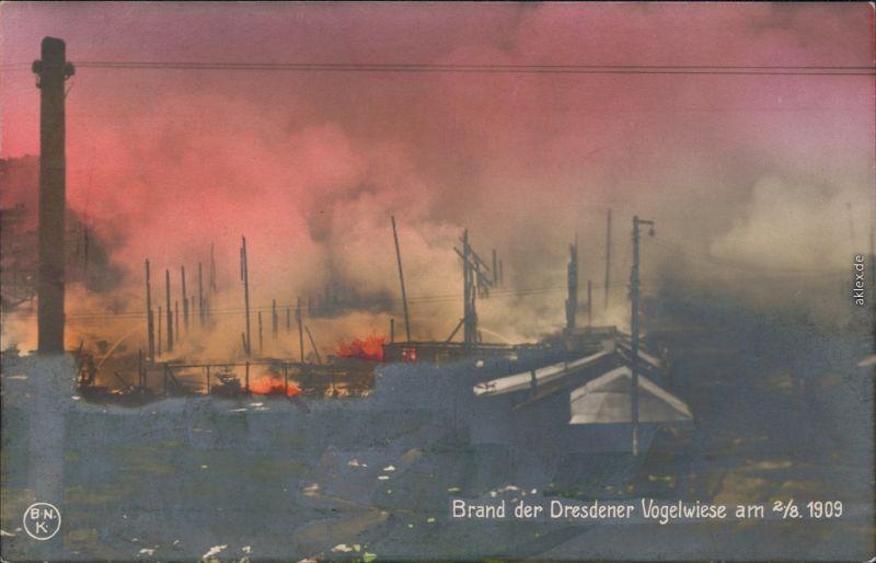 Johannstadt-Dresden Brand der Dresdener Vogelwiese am Fotokunst 2.8.1909 1909