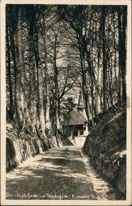 Ansichtskarte Küssnacht am Rigi Hohle Gasse und Tellskapelle 1930