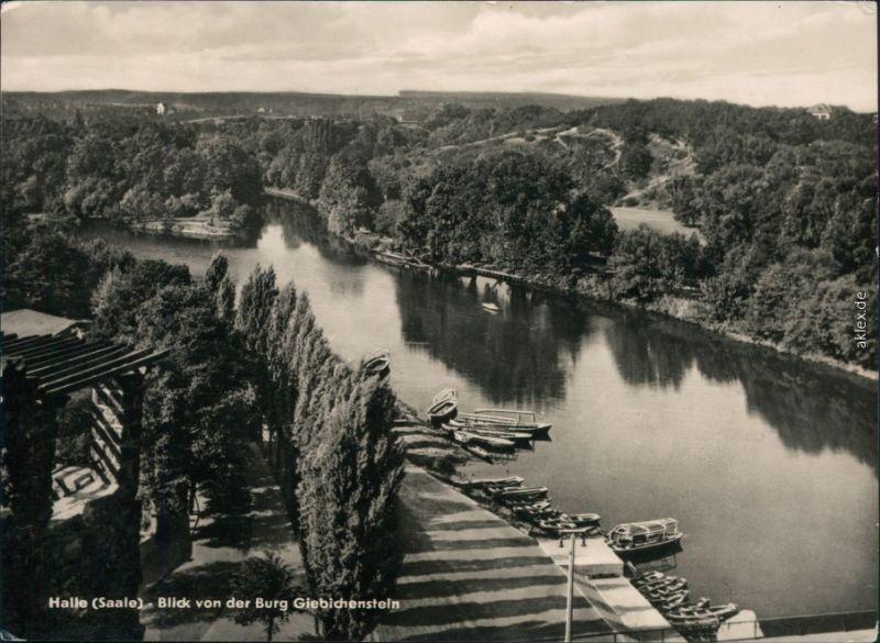 Giebichenstein-Halle (Saale) Blick von der Burg Giebichstein 1956