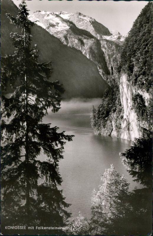 Ansichtskarte Schönau am Königssee Königssee mit Falkensteinerwand 1964