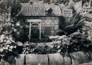 Ansichtskarte Lindau (Anhalt)-Zerbst DFGB Diät-Sanatorium - Parkmotiv 1961