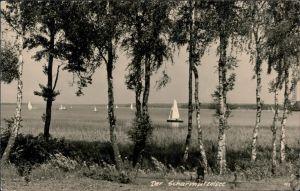 Ansichtskarte Wendisch Rietz Scharmützelsee mit Segelbooten 1963