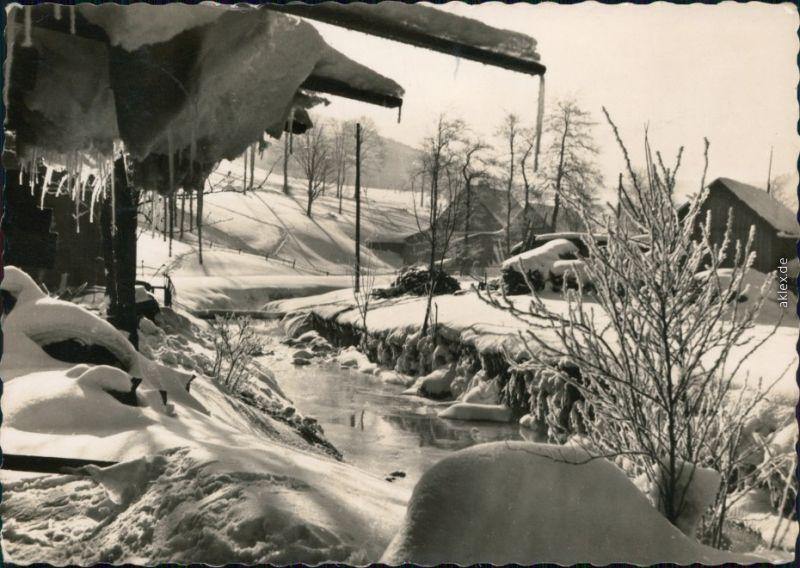 Ansichtskarte Wildenthal-Eibenstock Große Bockau im Winter 1965