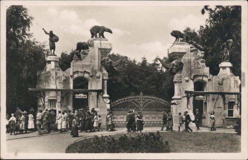 Ansichtskarte Stellingen-Hamburg Tierpark Hagenbeck 1960