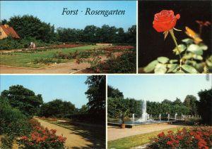 Ansichtskarte Forst (Lausitz) Baršć Rosengarten 1988