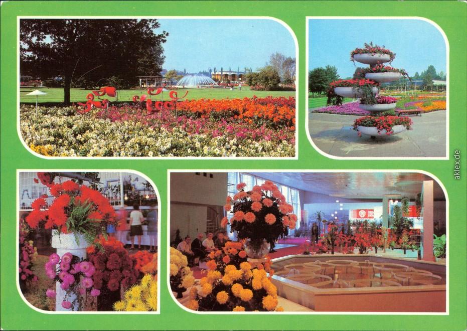 Ansichtskarte Erfurt Internationale Gartenbauausstellung der DDR (IGA) 1985